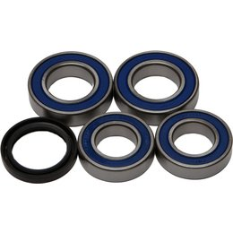 All Balls Wheel Bearing And Seal Kit Rear 25-1668 For Ducati Unpainted