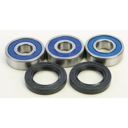 All Balls Racing Rear Differential Bearing Kit 25-1755 Unpainted