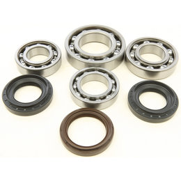 All Balls Racing ATV Rear Differential Bearing & Seal Kit Yamaha Grizzly 25-2099 Unpainted
