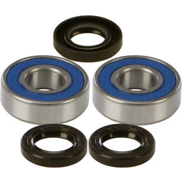 All Balls Racing Wheel Bearing And Seal Kit BMW Honda Kawasaki 25-1219 Unpainted