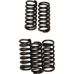 EBC CSK Coil Type Clutch Spring Kit For KTM Yamaha CSK42 Unpainted