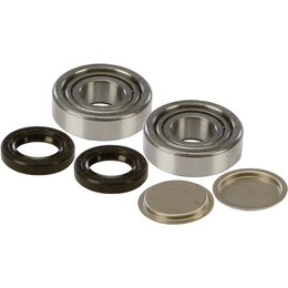 All Balls Swing Arm Bearing And Seal Kit 28-1155 For Bombardier Suzuki Unpainted