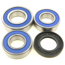 All Balls Racing Rear Wheel Bearing And Seal Kit KTM 2014-2016Duke 690 25-1706 Unpainted