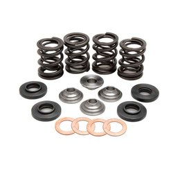 Kibblewhite Racing Valve Spring Kit .440 Inch Lift For KTM 400-560 RFS 2000-2009