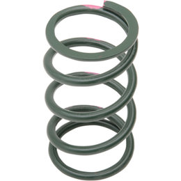 SLP Snowmobile High Performance Driven Clutch Spring 150/330 Green Pink 40-77 Green