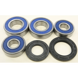 All Balls Racing Rear Wheel Bearing And Seal Kit Kawasaki 06-10 VN2000 25-1694 Unpainted