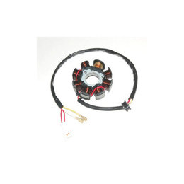 Electrosport Industries Stator For Husaberg FE/FS KTM 250-530 EXC SX XC