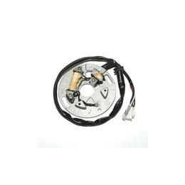 Electrosport Industries Stator For Yamaha WR250 WR 250 YZ250 YZ 250